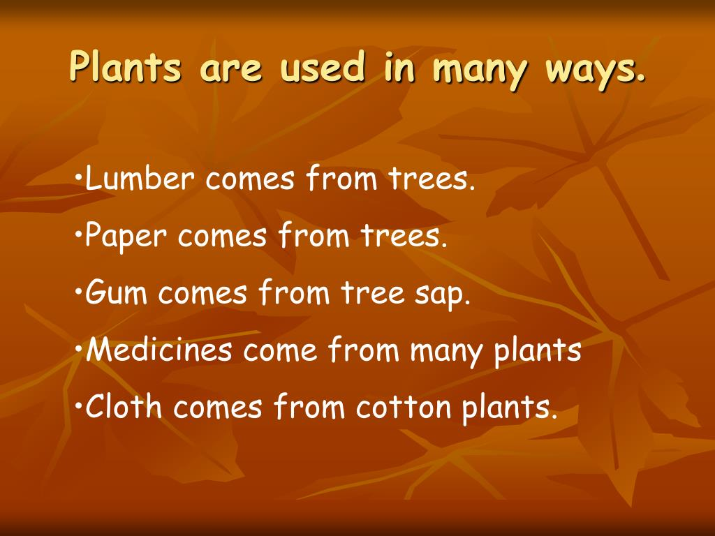 Plants are used in many ways