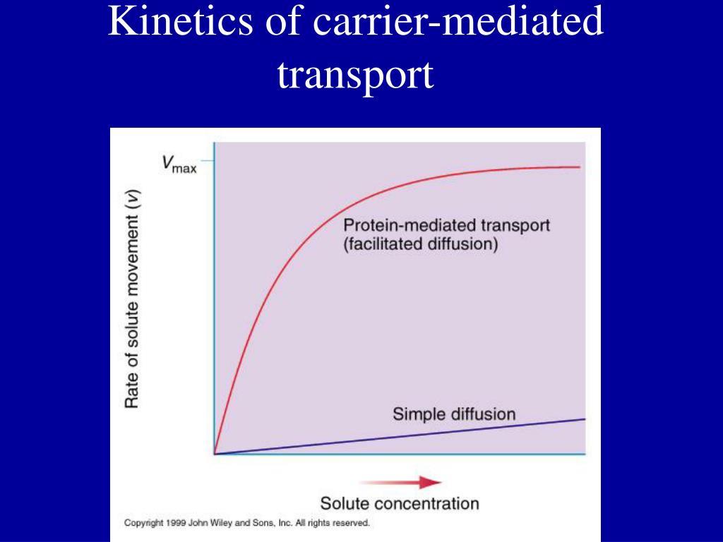 Kinetics of carrier-mediated transport