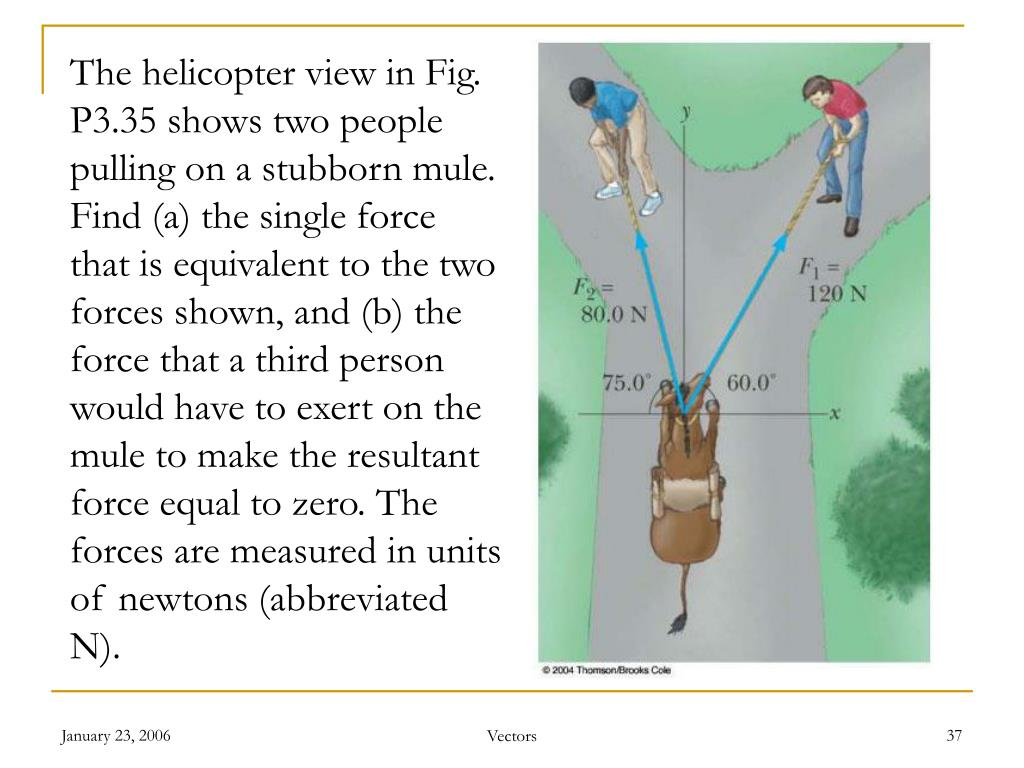 The helicopter view in Fig. P3.35 shows two people pulling on a stubborn mule. Find (a) the single force that is equivalent to the two forces shown, and (b) the force that a third person would have to exert on the mule to make the resultant force equal to zero. The forces are measured in units of newtons (abbreviated N).