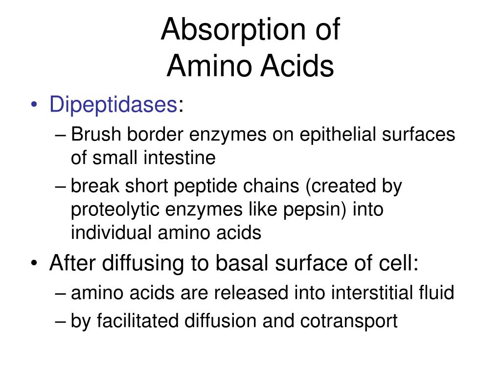 Absorption of