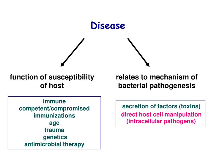 Function of susceptibility
