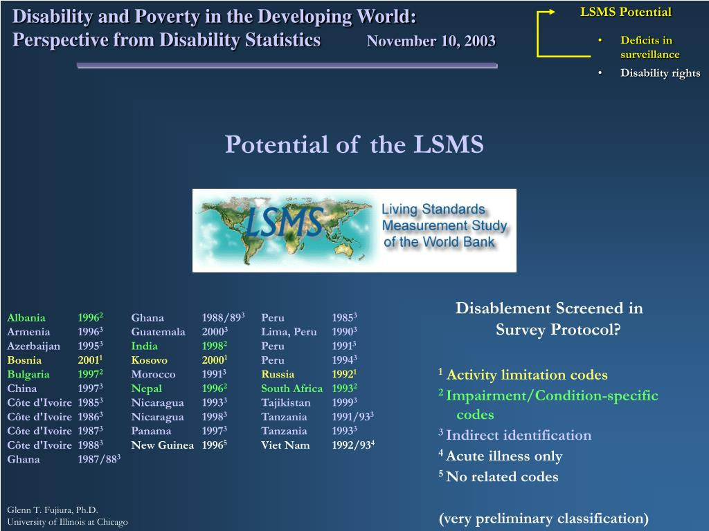 LSMS Potential