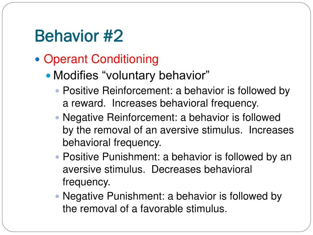 Behavior #2