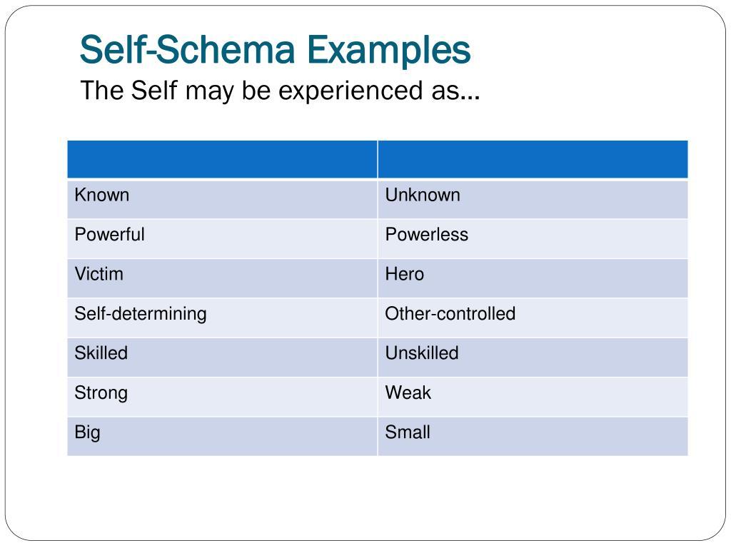 Self-Schema Examples