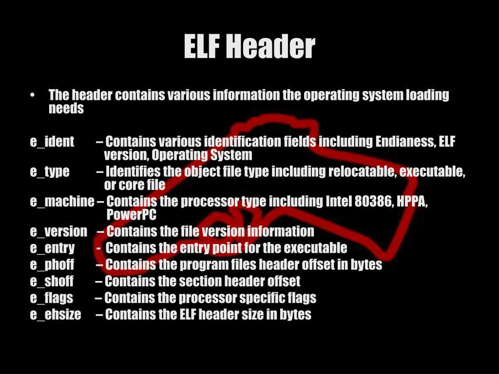 ELF Header