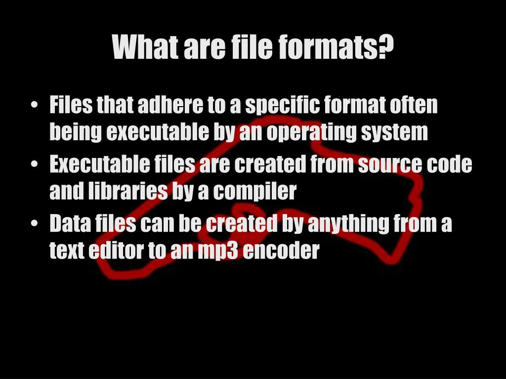 What are file formats?