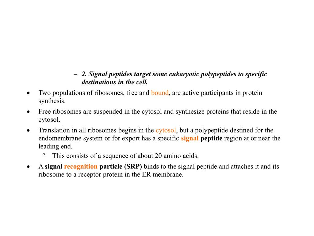 2. Signal peptides target some eukaryotic polypeptides to specific destinations in the cell.