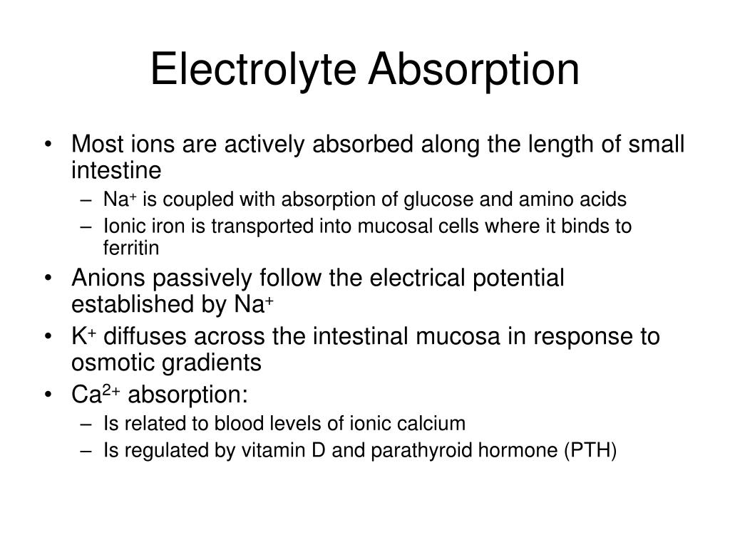 Electrolyte Absorption