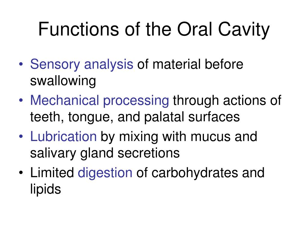 Functions of the Oral Cavity