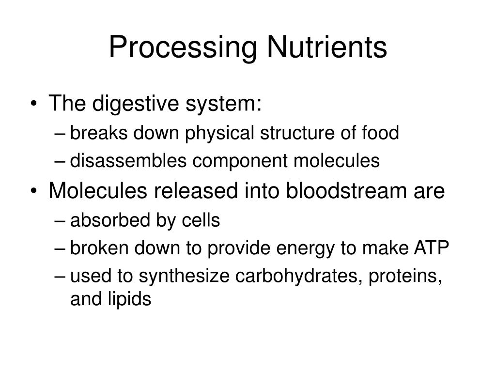 Processing Nutrients