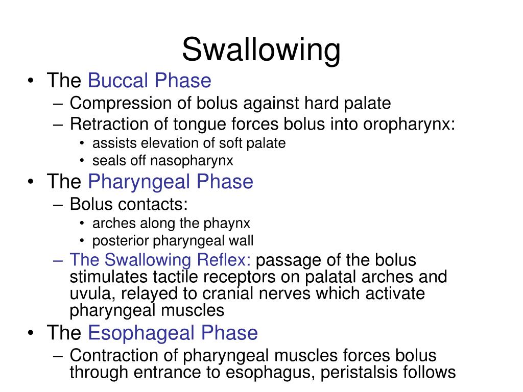 Swallowing