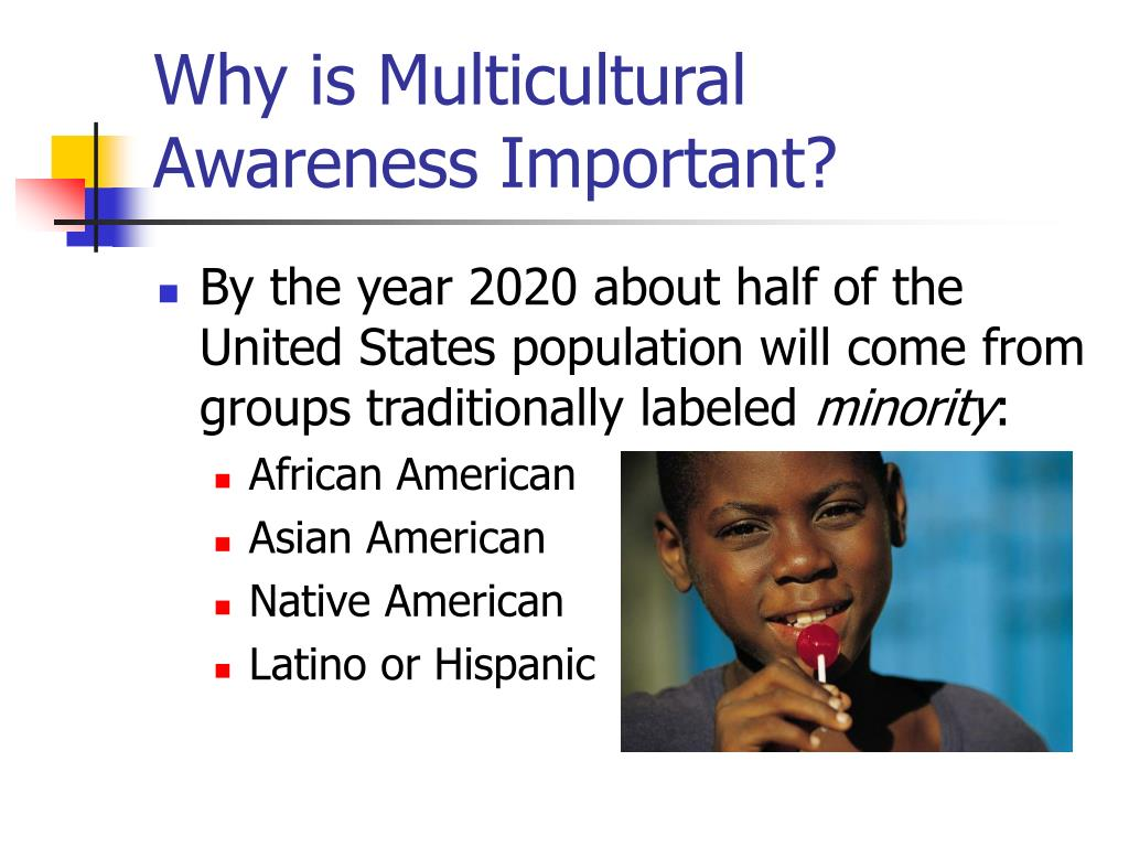 an analysis of the united states as a homogeneous melting pot of culture and ethnic diversity Students learn about several different metaphors that have been used to describe cultural diversity in the united states united states is a ___ melting pot.