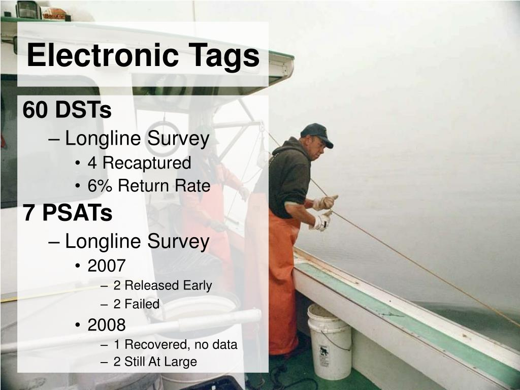 Electronic Tags