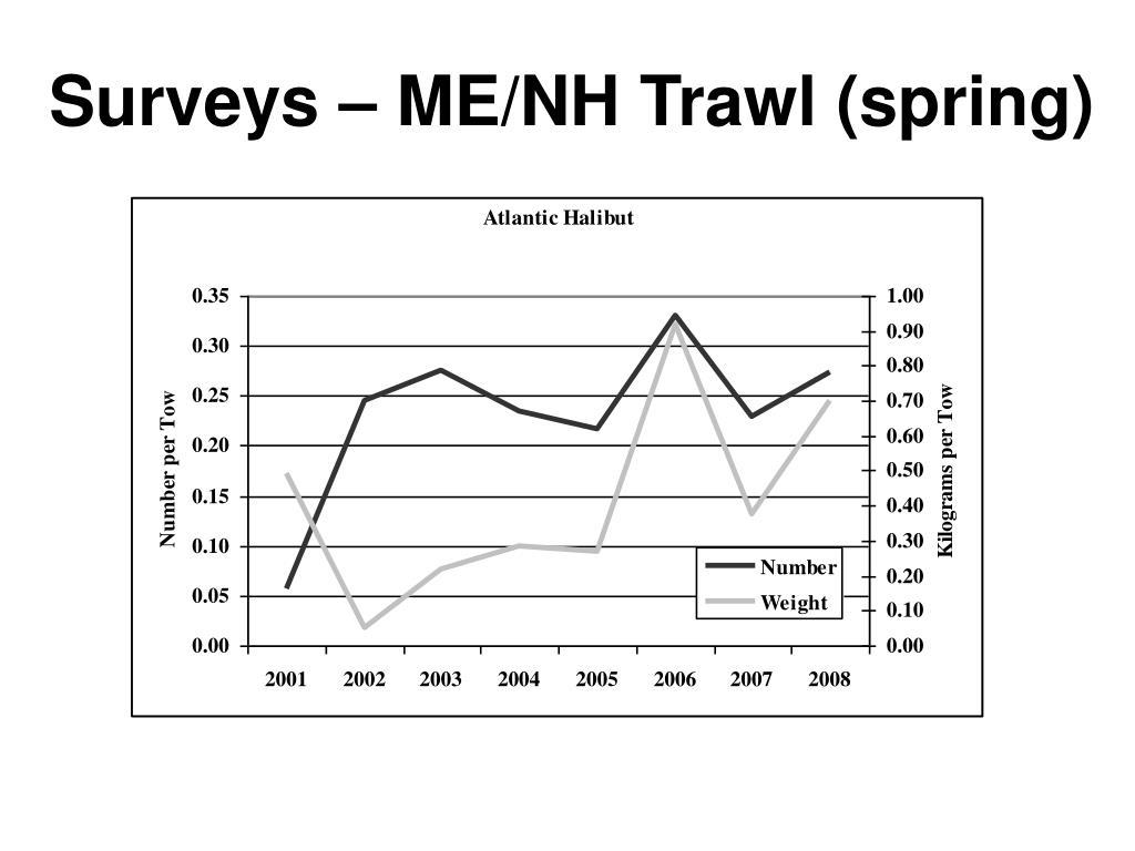 Surveys – ME/NH Trawl (spring)