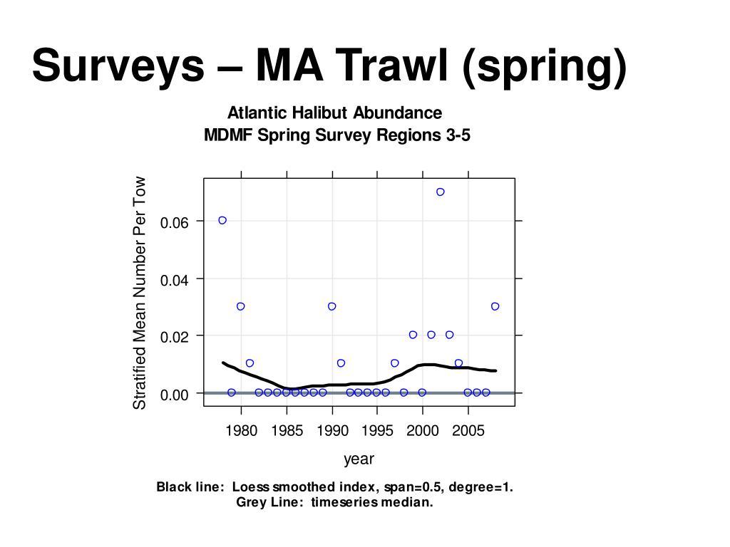 Surveys – MA Trawl (spring)