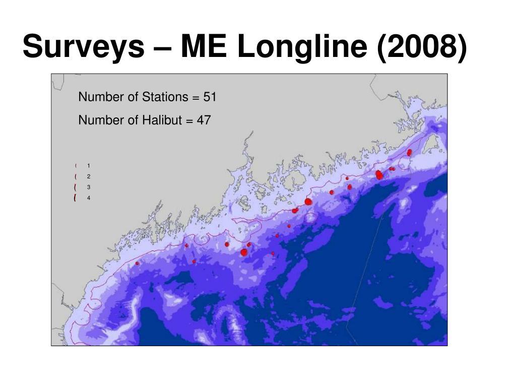 Surveys – ME Longline (2008)