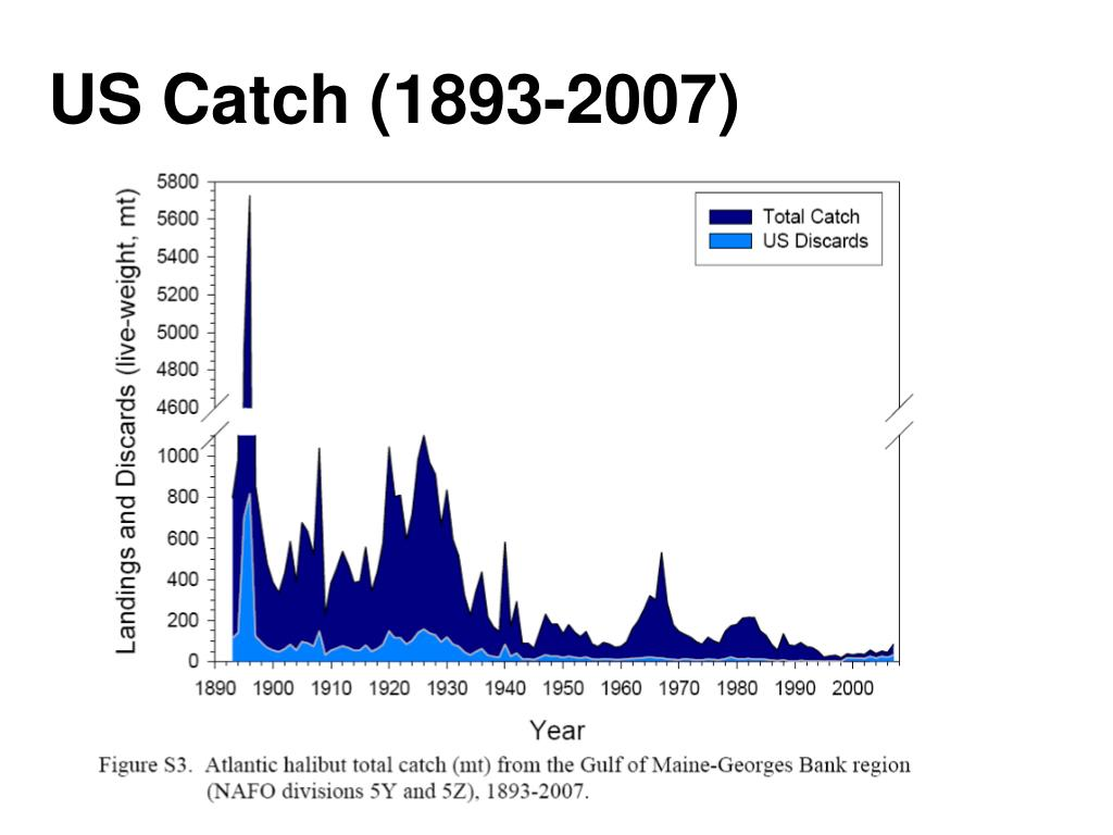 US Catch (1893-2007)