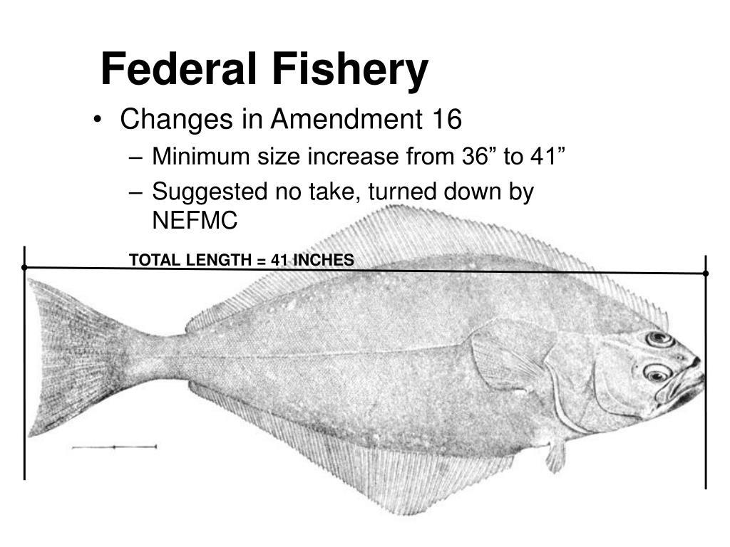 Federal Fishery