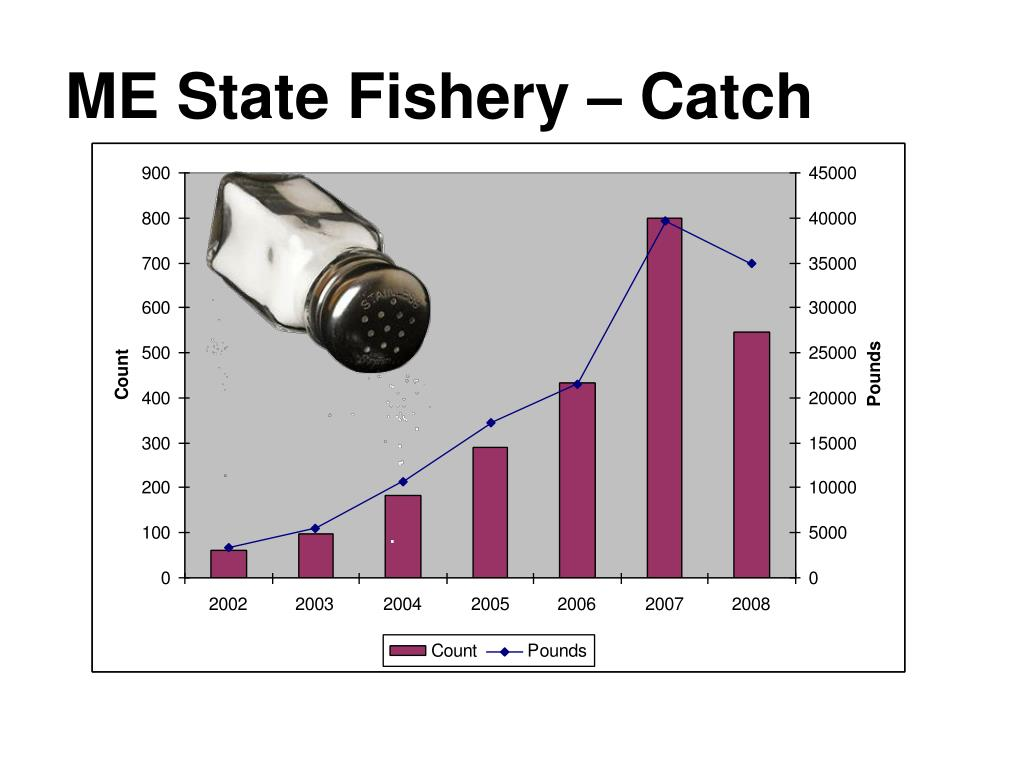 ME State Fishery – Catch