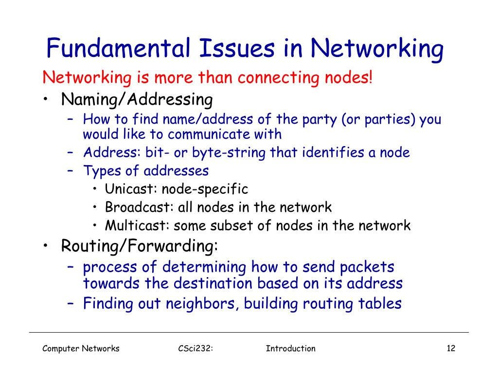 Fundamental Issues in Networking