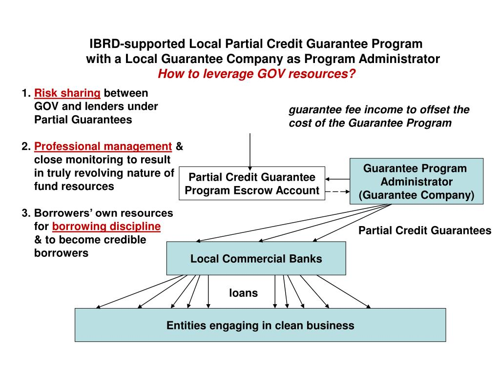 IBRD-supported Local Partial Credit Guarantee Program