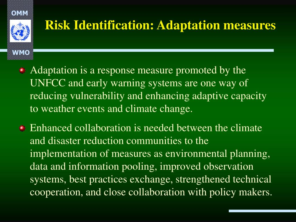 Risk Identification: Adaptation measures
