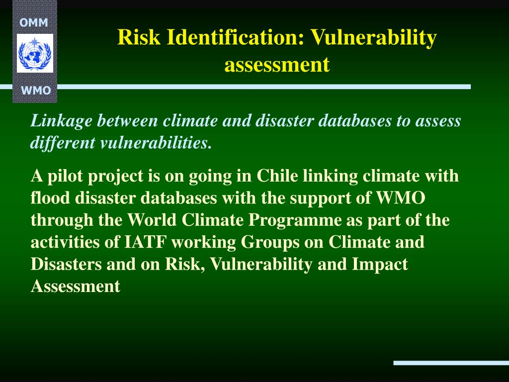 Risk Identification: Vulnerability assessment