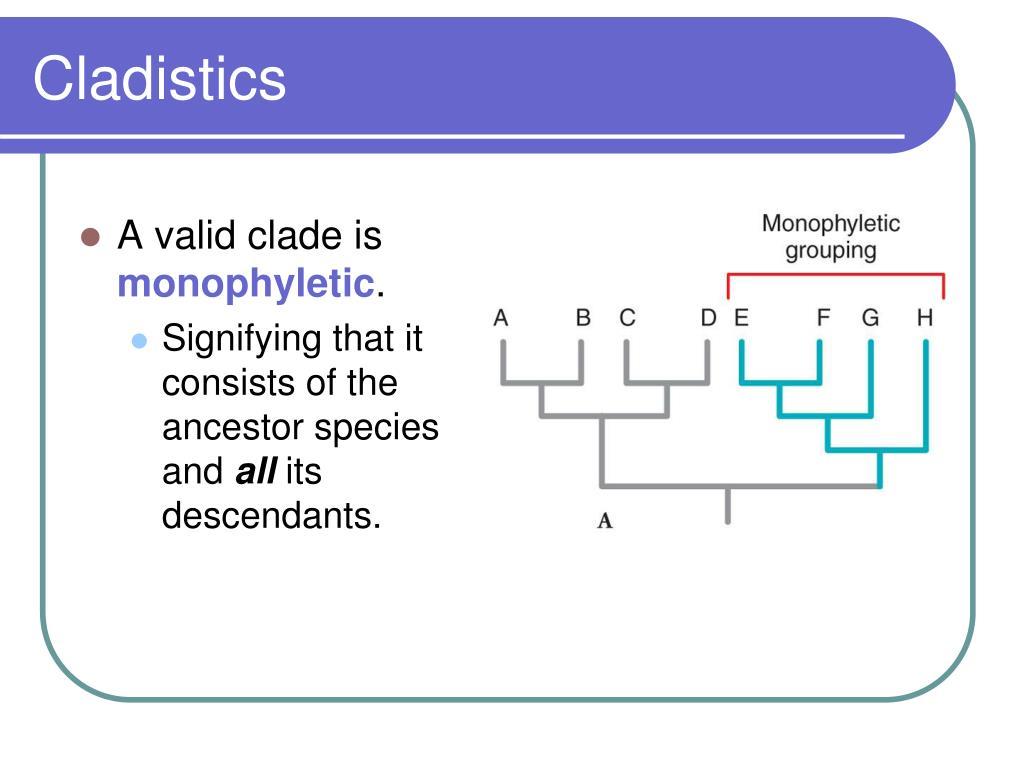 Cladistics