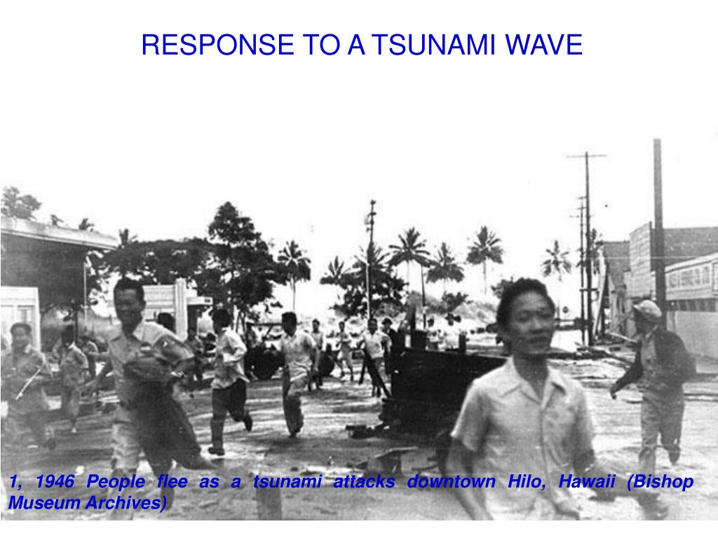 RESPONSE TO A TSUNAMI WAVE