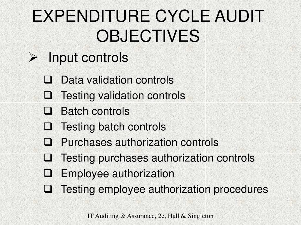 auditing the expenditure cycle Tweet do you want to set up an audit checklist to ensure that there proper internal controls for your company's expenditure cycle append below are some suggested salient internal controls points for the expenditure cycle: general policies and procedures for procurement and vendor selection should be clearly documented and communicated.