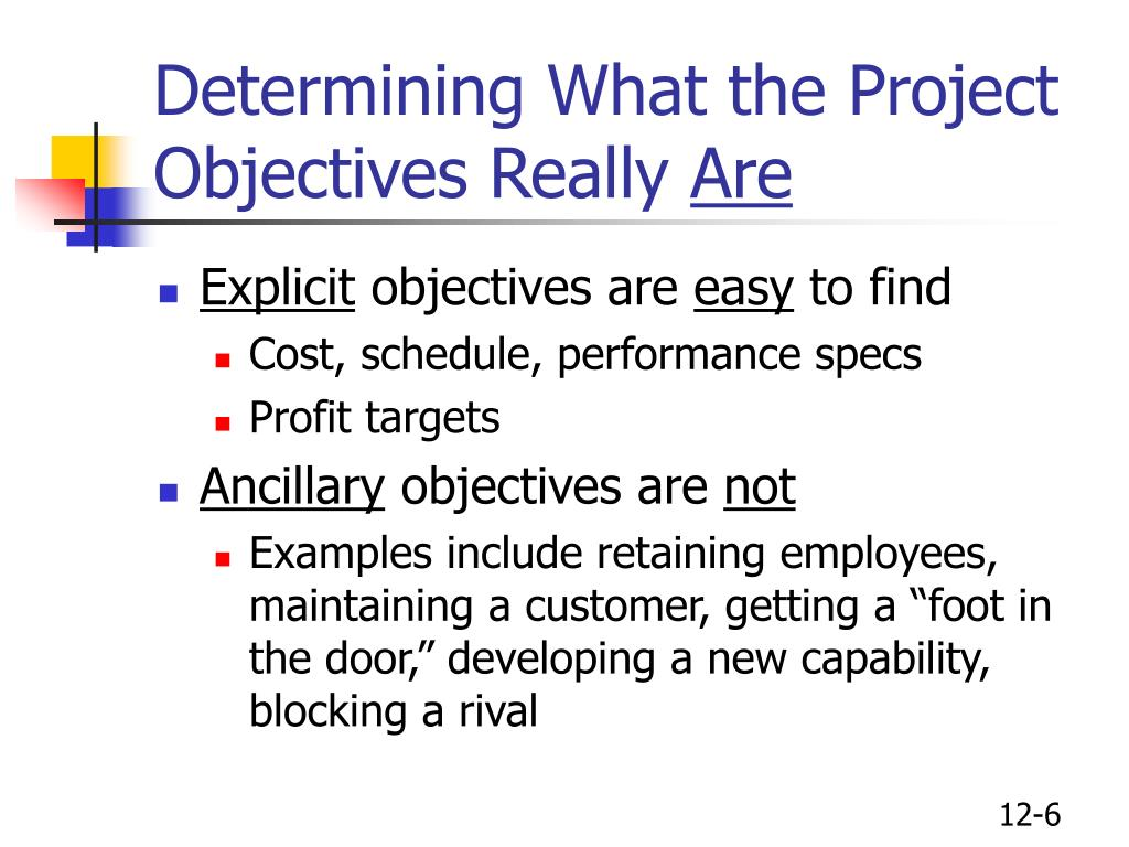 Determining What the Project Objectives Really