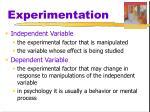 experimentation4