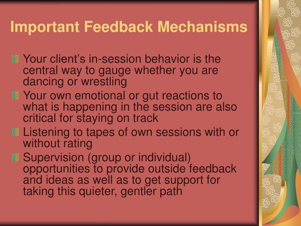 Important Feedback Mechanisms