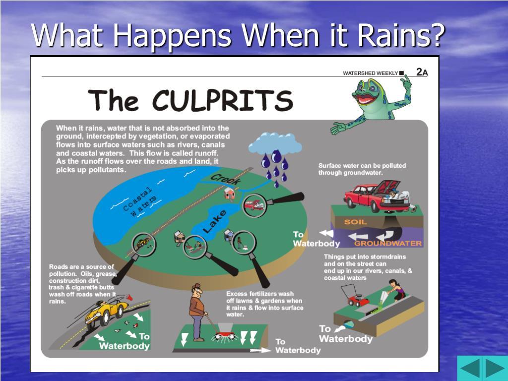 What Happens When it Rains?