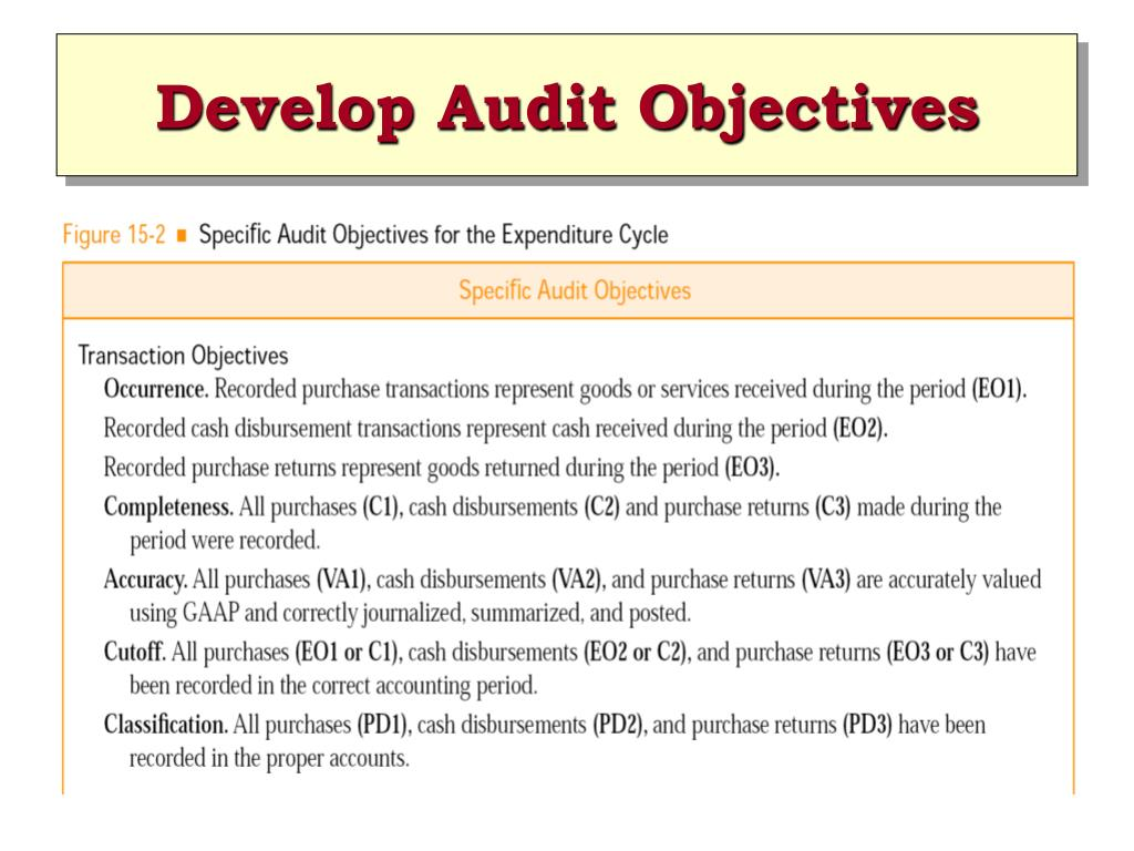 Develop Audit Objectives