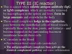 type iii ic reaction