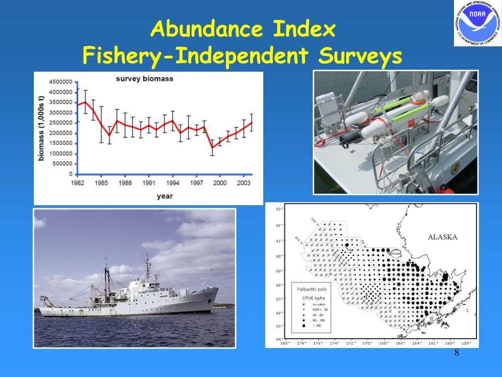 Abundance Index
