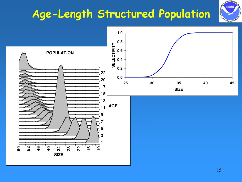 Age-Length Structured Population