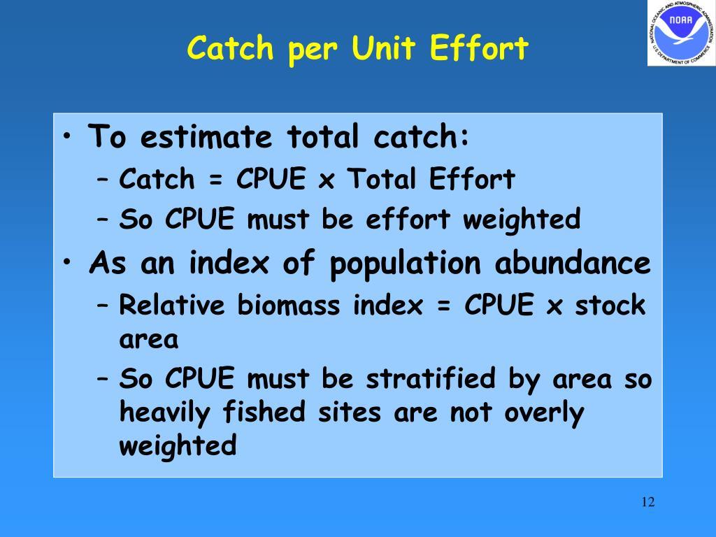 Catch per Unit Effort