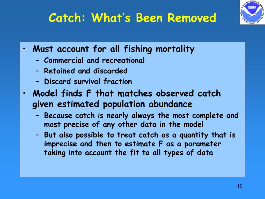 Catch: What's Been Removed