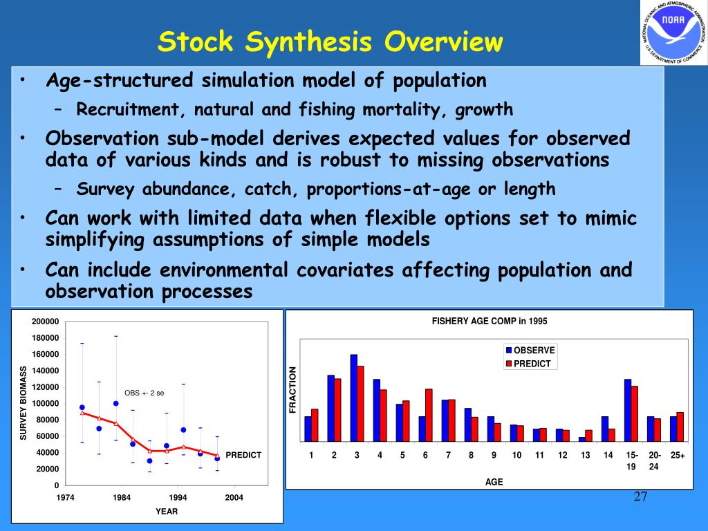 Stock Synthesis Overview