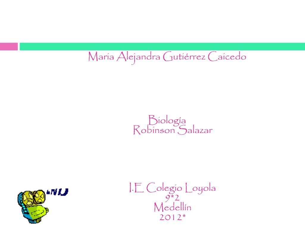 Maria Alejandra Gutiérrez