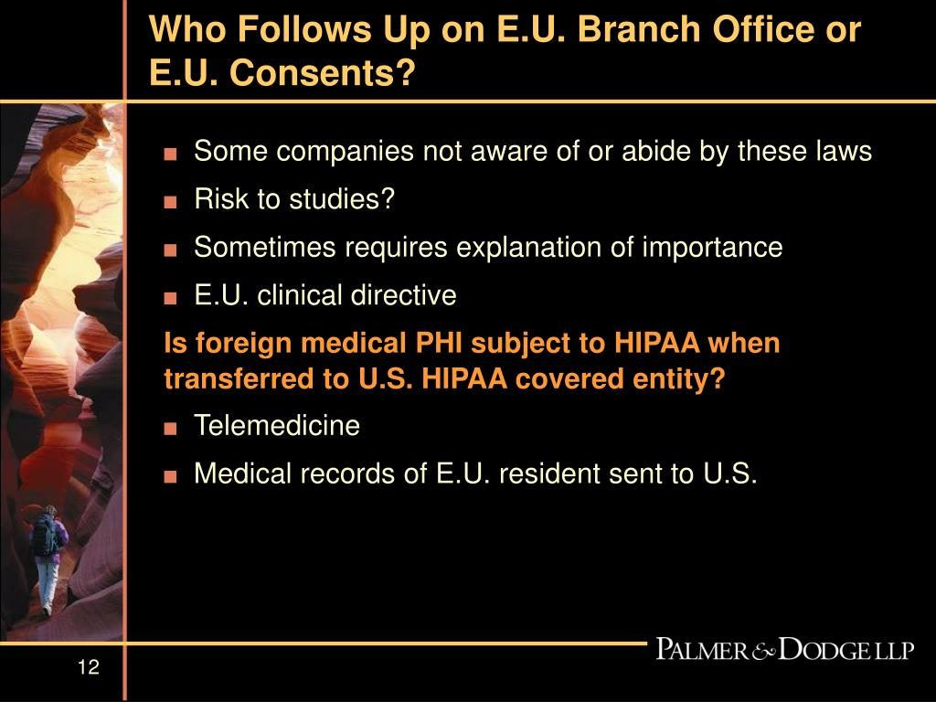 Who Follows Up on E.U. Branch Office or E.U. Consents?