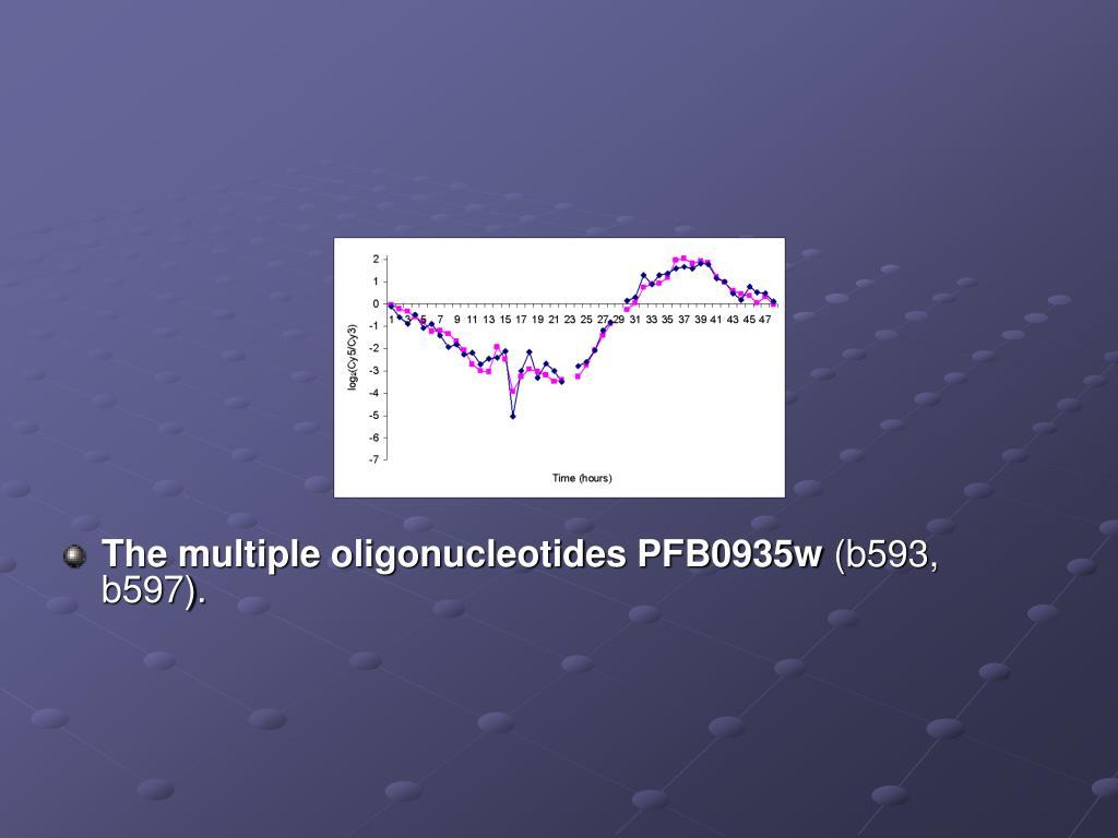 The multiple oligonucleotides PFB0935w