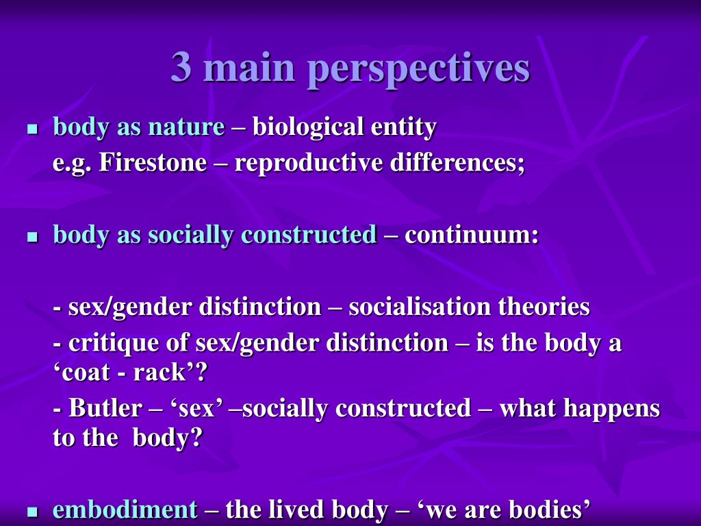 3 main perspectives