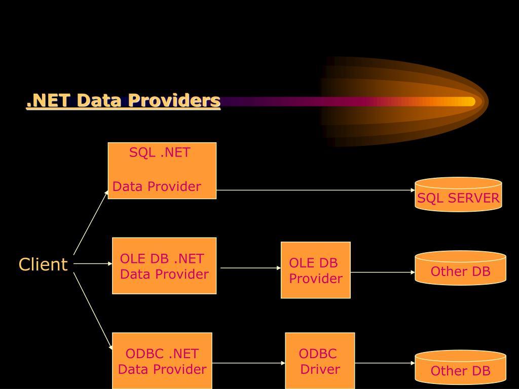 .NET Data Providers