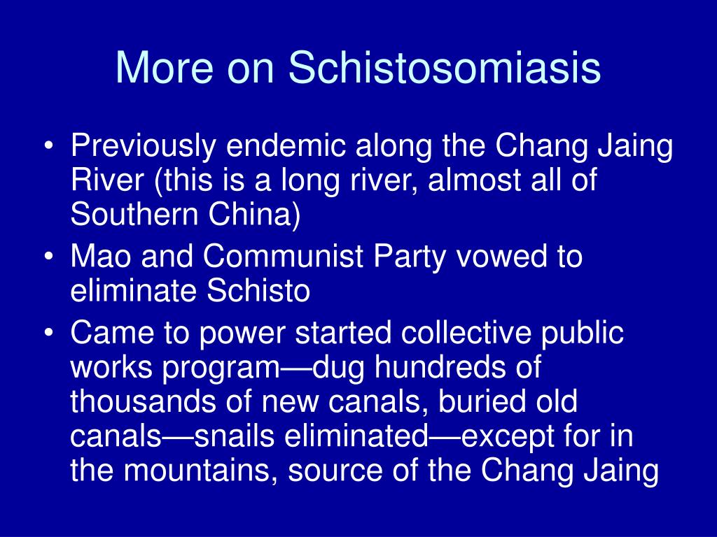 More on Schistosomiasis