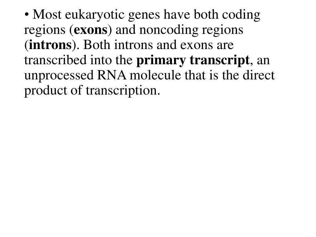 Most eukaryotic genes have both coding regions (