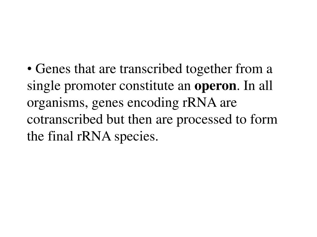 Genes that are transcribed together from a single promoter constitute an