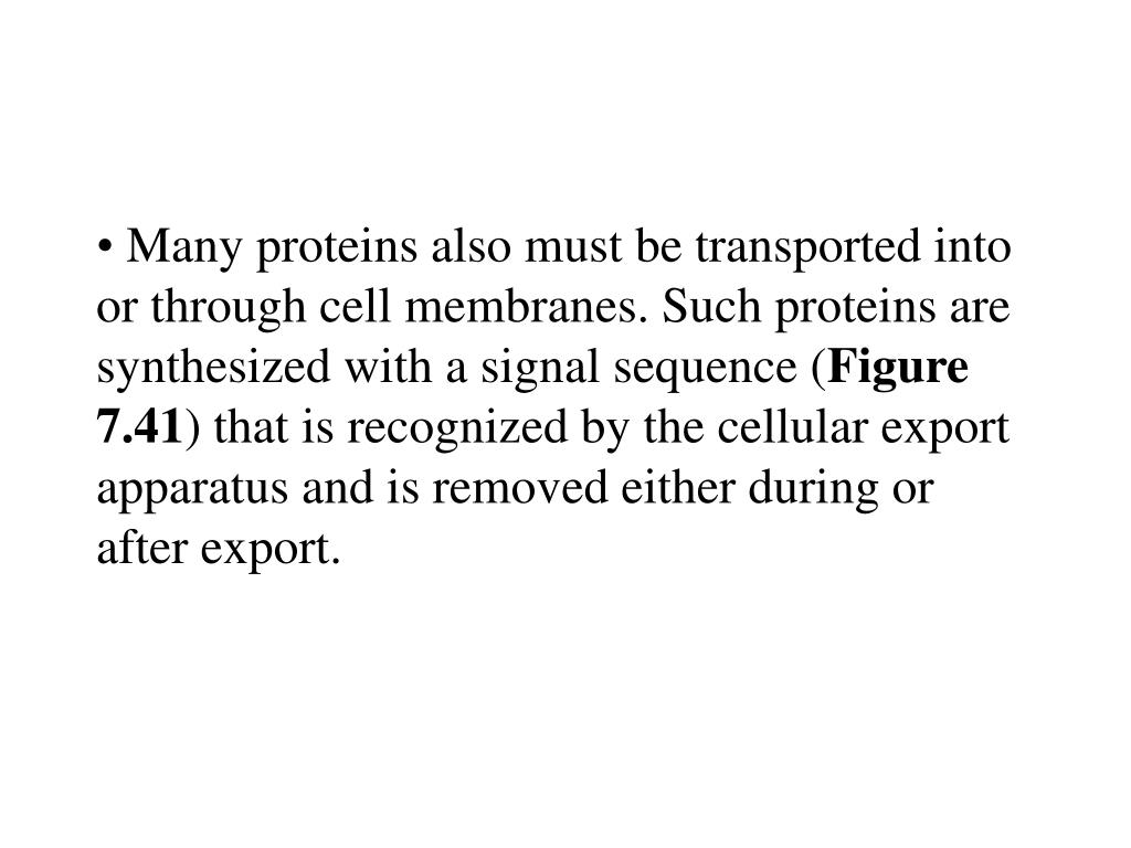 Many proteins also must be transported into or through cell membranes. Such proteins are synthesized with a signal sequence (